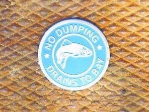 Some of the town's storm drains are marked with a stainless steel medallion to serve as a reminder that only rain should go down the drain.