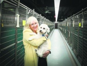 Supervisor Judi Bosworth holds a pooch from the town's Animal Shelter.