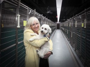 Supervisor Judi Bosworth poses with a pooch from the Town's Animal Shelter.