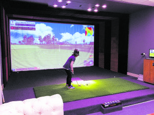 The PGA simulator