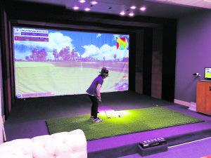 The PGA simulator
