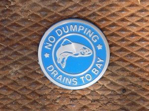Some of the town's storm drains are marked with this stainless steel medallion to serve as a reminder that only rain should go down the drain.