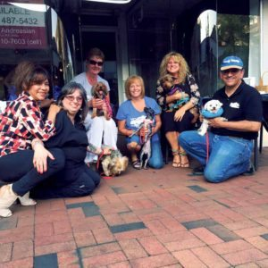 Long Island Dog Parents and Yorkie 911 Rescue introduced pets looking for a home to the community.