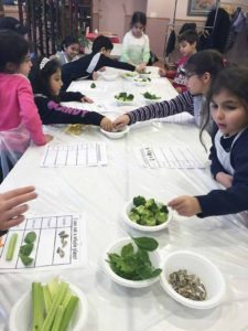 Creating vegetable charts