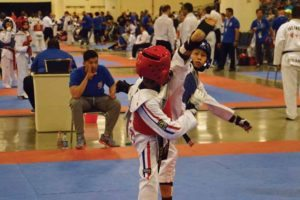 Wong performs  an axe kick.