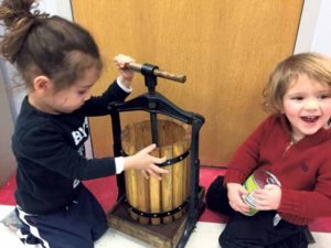 2 year olds from Morah Ina and Morah Diana's Nursery Aleph classes press olives to make oil as they learn about the Shivat Haminim,