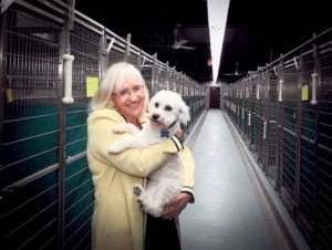 Supervisor Judi Bosworth with a dog at the Town of North Hempstead Animal Shelter